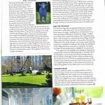 Verve page 2